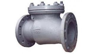 Клапан обратный стальной поворотный 19с53нж